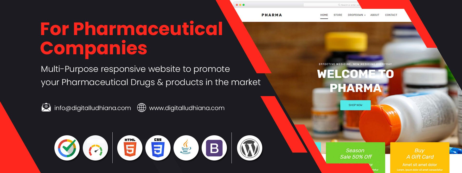 Pharmaceutical drugs making company website designing in ludhiana punjab india